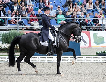 Play-offs Equitation Global Champions Tour 2018