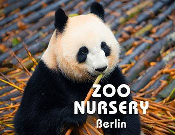 Zoo nursery Berlin S06E08