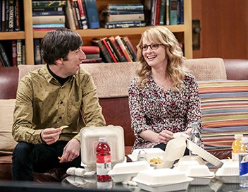 The Big Bang Theory S10E18 Un toit pour Rajesh