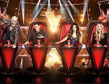 Sur TF1 à 21h05 : The Voice, la plus belle voix
