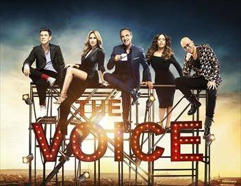 Sur TF1 à 23h30 : The Voice