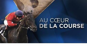 REPLAY - LE QUINTÉ DU 23 OCTOBRE 2016 - HIPPODROME DE SAINT-CLOUD