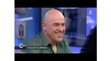 L'interview de Dominique A - C à vous - 20/03/2015