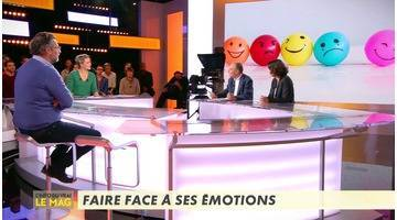 Replay Comment faire face à ses émotions ? - L'Info du vrai du 08/11 - CANAL+