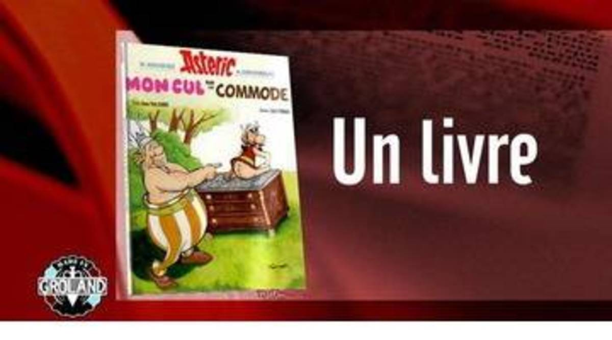 Replay Made In Groland Du 07 11 2015 Un Livre Un Dos Asterix